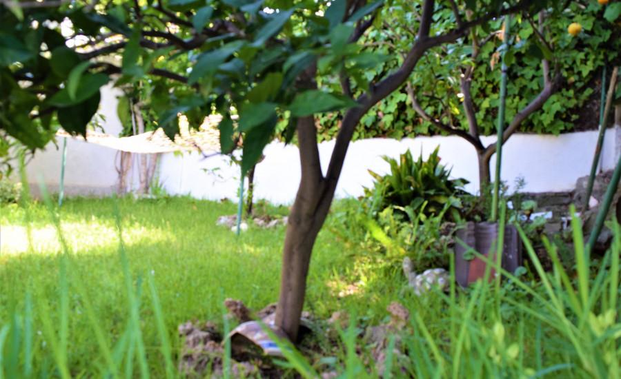 Chalet con piscina en Segur de Calafell - Fotografia nº 62