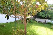 Chalet con piscina en Segur de Calafell - Miniatura nº 64
